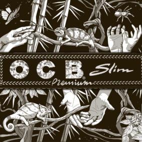 סדרת איורים לחפיסות ניירות גלגול של המותג OCB - סטודיו ליכטרמן